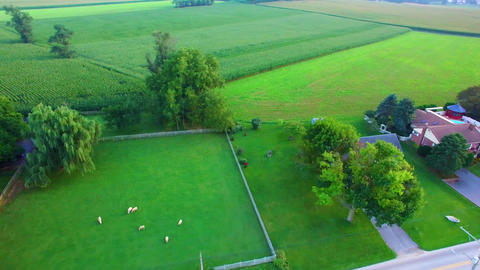 Amish Countryside and Amish Homes by Drone Footage