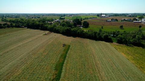 Amish Farmer Harvesting Crop Archivo