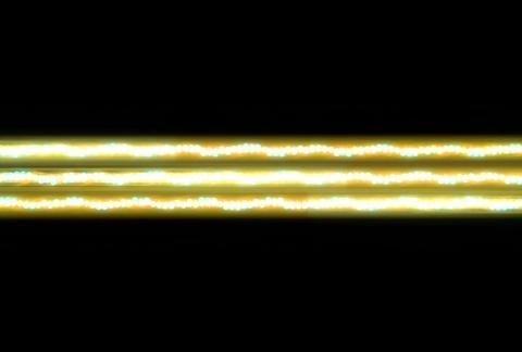 VJ Loops : Waveform 04 CG動画