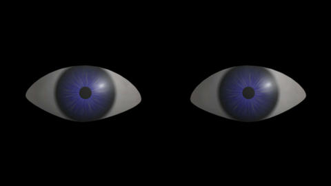 Eyes Blinking. CG. HD Animation