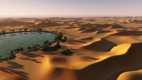 1090 Sahara Desert Sphinx Stock Video Footage