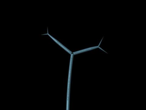 Antenna Tree Stock Video Footage