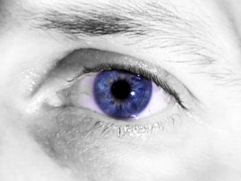 Eye Colors Stock Video Footage