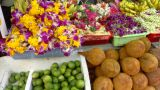 Indian Groceries stock footage