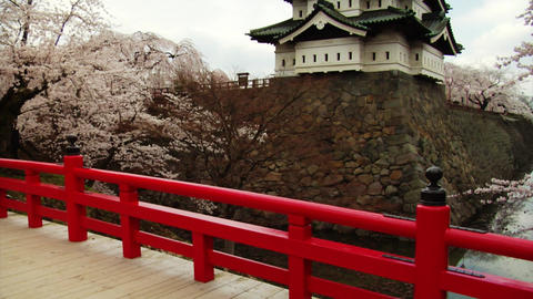 Hirosaki Castle Tilt Up stock footage