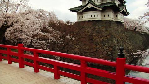 Hirosaki Castle Tilt Up Stock Video Footage