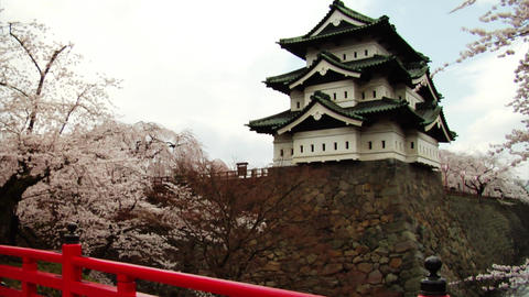 Hirosaki Castle Tilt Up Stock Video Footage