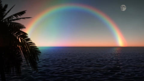 (1033) ocean Rainbow with Full Moon and Palms Stock Video Footage