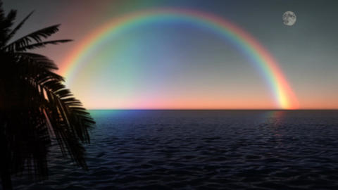 (1033) ocean Rainbow with Full Moon and Palms Footage