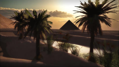 1072 Pyramid Oasis and Palms Sunset Egypt Stock Video Footage