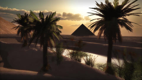 1072 Pyramid Oasis and Palms Sunset Egypt Footage