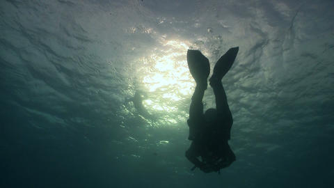 Diver swims over camera. Red sea Stock Video Footage