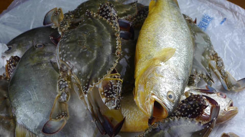Delicious crab & Croaker Pomfret fish,within dial plate.fisheries ice frozen Footage