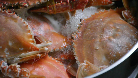 Cooking Steamed delicious crabs in boiling foam pot Footage