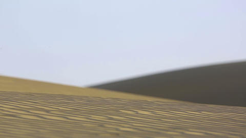 Dunes of Thar desert Stock Video Footage
