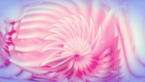 Nautilium - Organic Surreal Pattern Video Background Loop Stock Video Footage