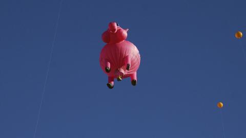 Shot of a variety of hot air balloons Footage