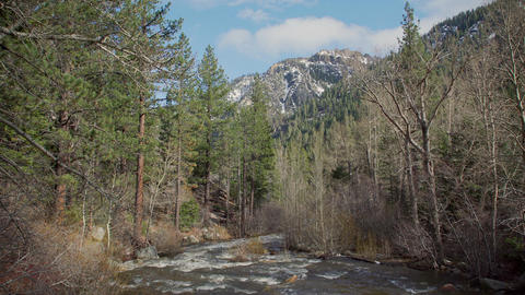 Clean mountain snow water fills a creek in the Sierra Nevada mountain range Footage