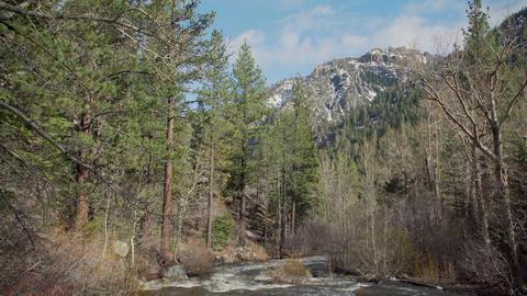 Snow water fills a creek in the Sierra Nevada mountain range Footage