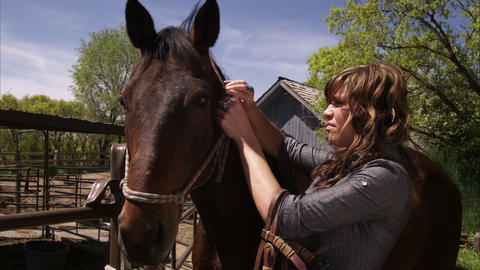 A static shot of a woman adjusting a horse's bridle Footage