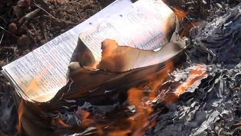 Burning Papers with Notes Live Action
