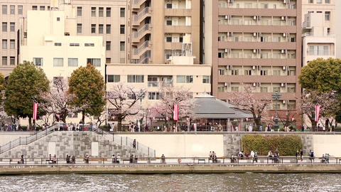 Spring and tourist attractions ビデオ