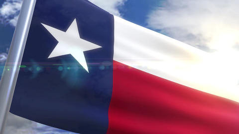 Waving flag of the state of Texas USA Animation
