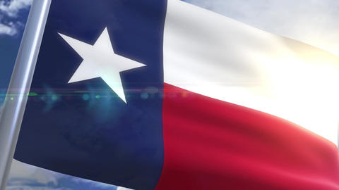 Waving flag of the state of Texas USA 動画素材, ムービー映像素材