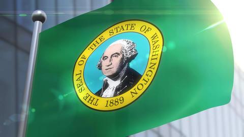 Waving flag of the state of Waschington DC USA 動画素材, ムービー映像素材