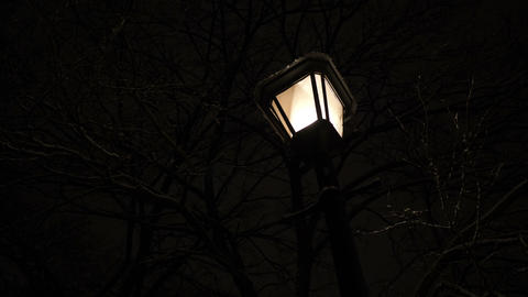 Vintage lamp in the park during winter Footage