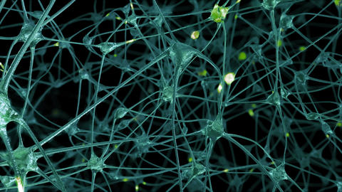 Neurons and Synapses Animation