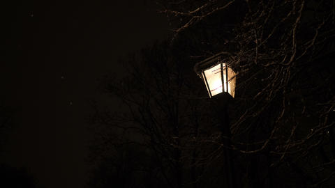 Romantic street lamp in the park Footage
