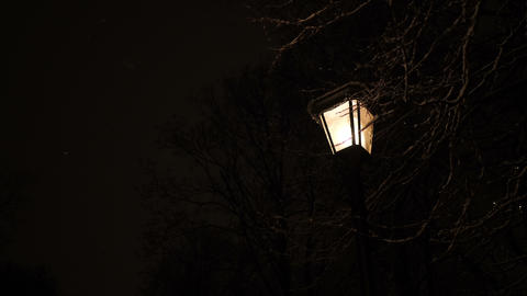 Romantic street lamp in the park Stock Video Footage