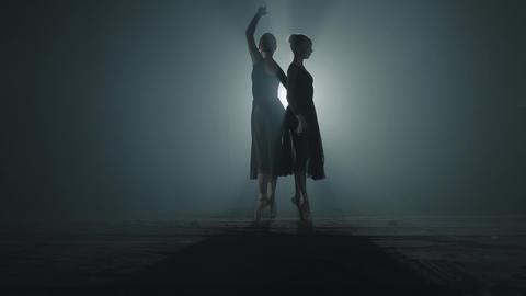 Graceful ballet dancers shows classic ballet pas. Two professional ballerinas Footage