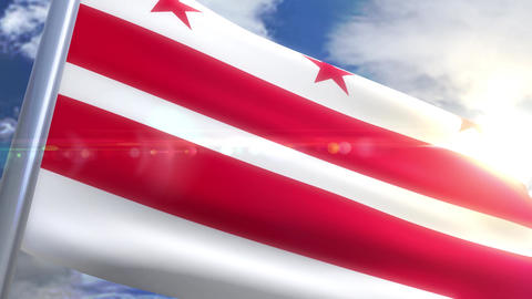 Waving flag of the state of Waschington DC USA Animation
