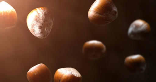 hazelnut falling in slow motion prores footage nuts brown food Animation
