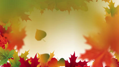 Autumn falling leaves with white background placeholder... Stock Video Footage