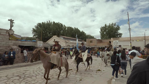 Exhibition of horses in festival Footage