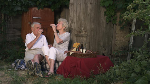 Slow motion static shot of elderly couple having a picnic while laughing and loo Footage