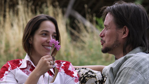 Close-up tracking shot of young woman receiving a purple flower from a man Footage