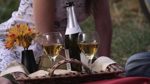 Slow motion view of wine bottle and glasses at picnic Footage