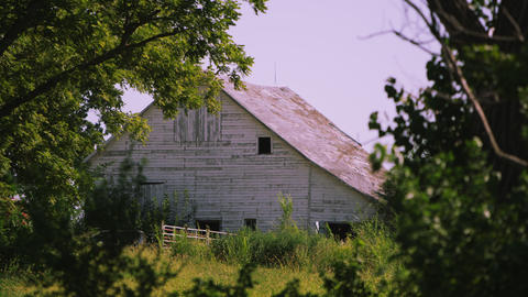 Static view of old white barn through the trees Footage