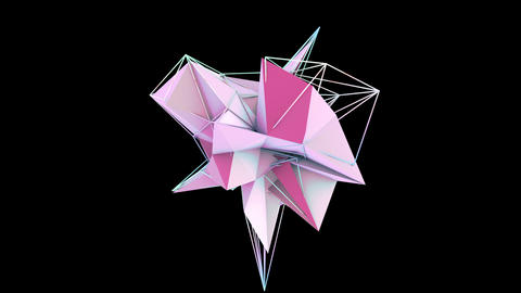Polygon 010 1 Animation