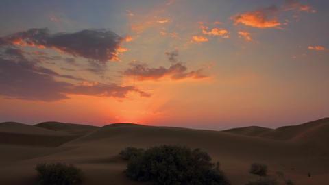 Sunrise in Tar desert, India, zoom in timelapse Live Action