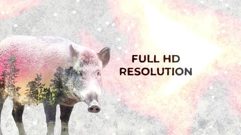 Double Exposure Slideshow ME After Effects Template
