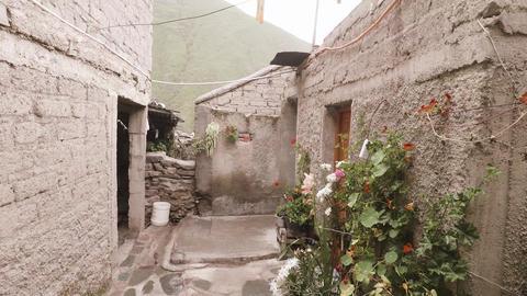 Poor hostel in the mountains, Acción en vivo