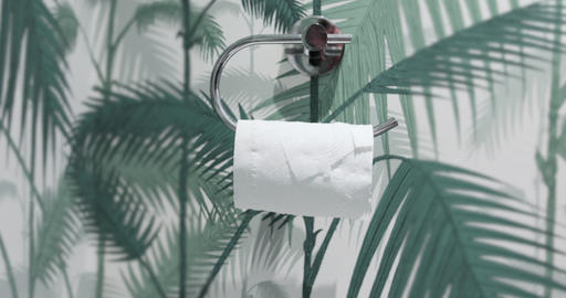 Person takes the last strip of paper from a toilet roll ライブ動画