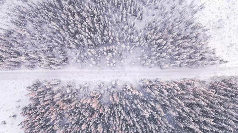 Aerial view of a snowy forest while snow falls from the sky Animation
