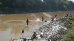 Casting Fisherman Working In Team ,Battambang,Cambodia stock footage