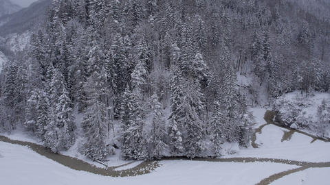 Aerial - Snow covered trees on a hill with a river beneath Footage